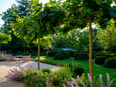 Landscape Associates About