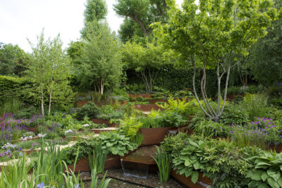 Landscape Associates A Garden for First Touch at St George's